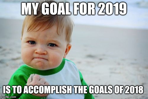 My goals for the year | MY GOAL FOR 2019 IS TO ACCOMPLISH THE GOALS OF 2018 | image tagged in memes,success kid original | made w/ Imgflip meme maker