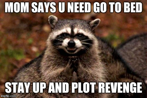 Evil Plotting Raccoon | MOM SAYS U NEED GO TO BED STAY UP AND PLOT REVENGE | image tagged in memes,evil plotting raccoon | made w/ Imgflip meme maker