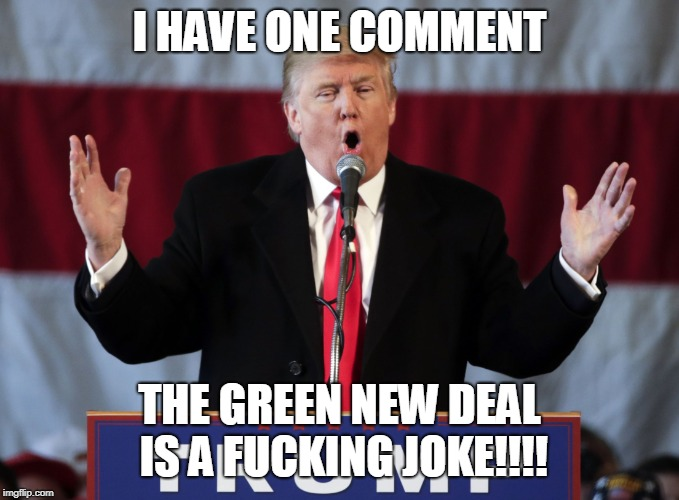 Make america great again | I HAVE ONE COMMENT THE GREEN NEW DEAL IS A F**KING JOKE!!!! | image tagged in make america great again | made w/ Imgflip meme maker