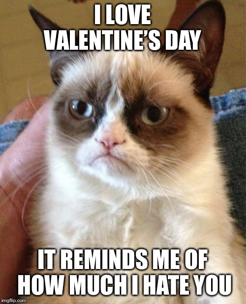 Grumpy Cat | I LOVE VALENTINE'S DAY IT REMINDS ME OF HOW MUCH I HATE YOU | image tagged in memes,grumpy cat | made w/ Imgflip meme maker