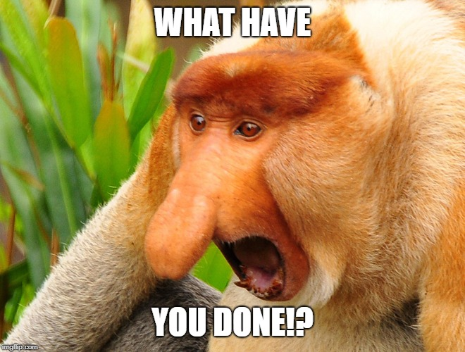 WHAT HAVE YOU DONE!? | image tagged in janusz monkey screaming | made w/ Imgflip meme maker