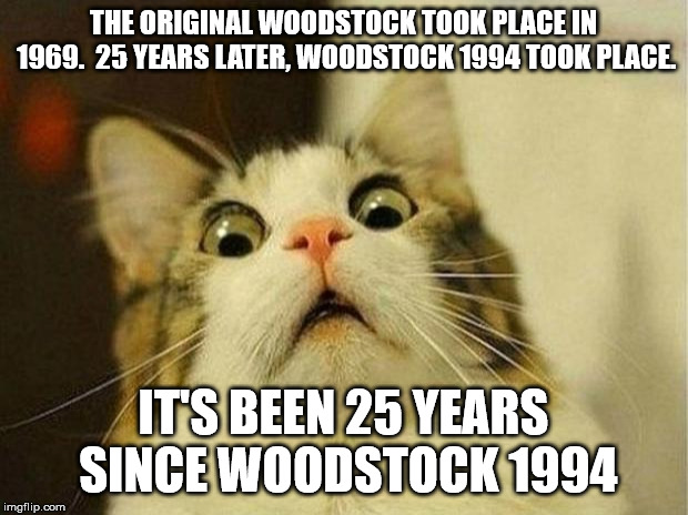 Scared Cat | THE ORIGINAL WOODSTOCK TOOK PLACE IN 1969.  25 YEARS LATER, WOODSTOCK 1994 TOOK PLACE. IT'S BEEN 25 YEARS SINCE WOODSTOCK 1994 | image tagged in memes,scared cat,AdviceAnimals | made w/ Imgflip meme maker