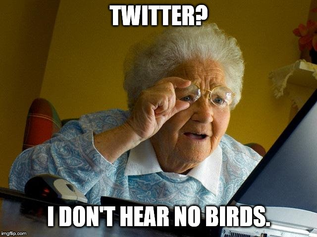 Grandma Finds The Internet |  TWITTER? I DON'T HEAR NO BIRDS. | image tagged in memes,grandma finds the internet | made w/ Imgflip meme maker
