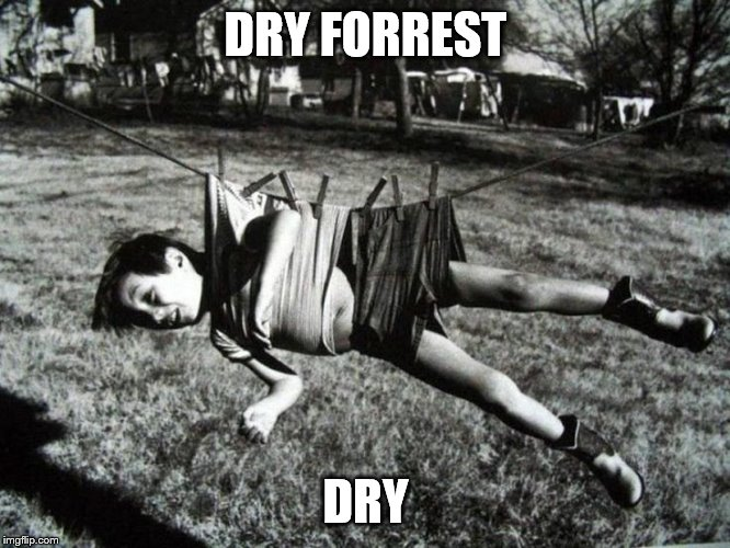 yes its a repost, but its of one of my own, and for a good cause. Happy Forrest Gump week all. | DRY FORREST DRY | image tagged in memes,forrest gump,that boy sure can drip | made w/ Imgflip meme maker