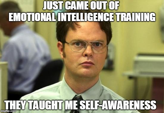 Dwight Schrute | JUST CAME OUT OF EMOTIONAL INTELLIGENCE TRAINING THEY TAUGHT ME SELF-AWARENESS | image tagged in memes,dwight schrute | made w/ Imgflip meme maker