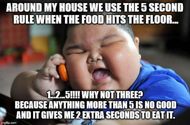 fat kid | AROUND MY HOUSE WE USE THE 5 SECOND RULE WHEN THE FOOD HITS THE FLOOR... 1...2...5!!!! WHY NOT THREE? BECAUSE ANYTHING MORE THAN 5 IS NO GOO | image tagged in fat kid | made w/ Imgflip meme maker