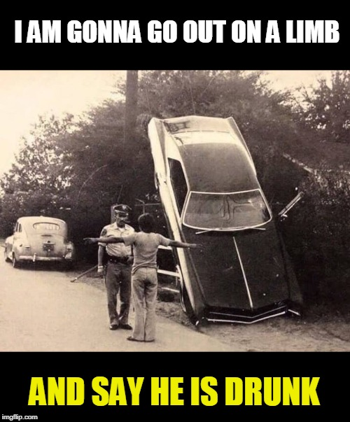 oops | I AM GONNA GO OUT ON A LIMB AND SAY HE IS DRUNK | image tagged in drunk driving,cops,fail | made w/ Imgflip meme maker