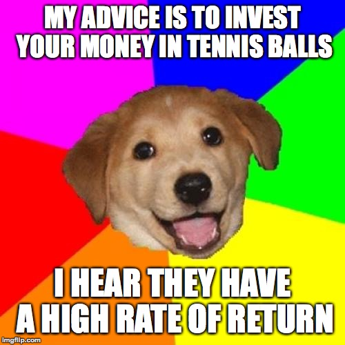 Sticks are also a good investment. |  MY ADVICE IS TO INVEST YOUR MONEY IN TENNIS BALLS; I HEAR THEY HAVE A HIGH RATE OF RETURN | image tagged in memes,advice dog,funny,memelord334,always upvotes,funny dog memes | made w/ Imgflip meme maker