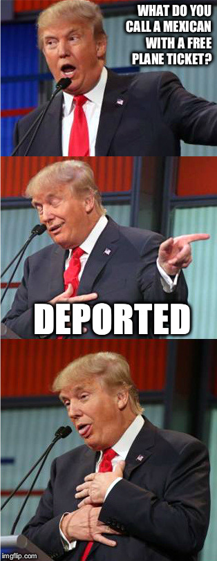 I came up with this pun randomly | WHAT DO YOU CALL A MEXICAN WITH A FREE PLANE TICKET? DEPORTED | image tagged in bad pun trump,donald trump,president,mexico,deportation | made w/ Imgflip meme maker