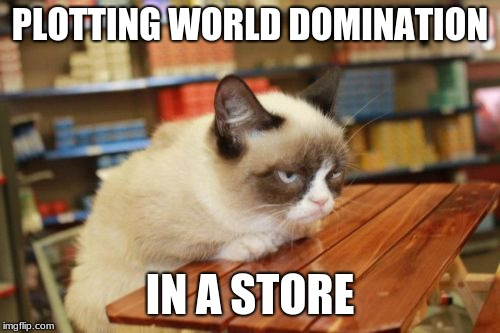 Grumpy Cat Table |  PLOTTING WORLD DOMINATION; IN A STORE | image tagged in memes,grumpy cat table,grumpy cat | made w/ Imgflip meme maker