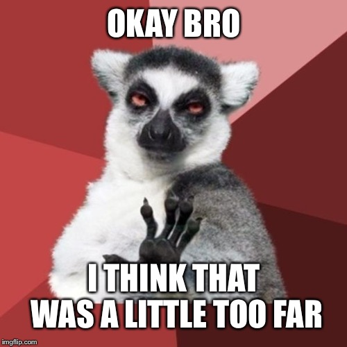 Chill Out Lemur Meme | OKAY BRO I THINK THAT WAS A LITTLE TOO FAR | image tagged in memes,chill out lemur | made w/ Imgflip meme maker