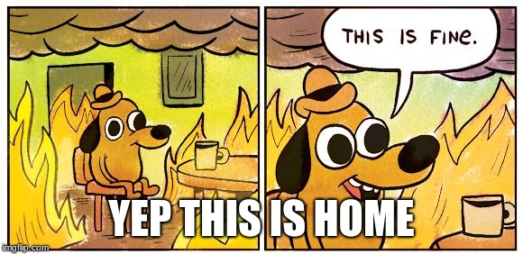 This is fine dog | YEP THIS IS HOME | image tagged in this is fine dog | made w/ Imgflip meme maker