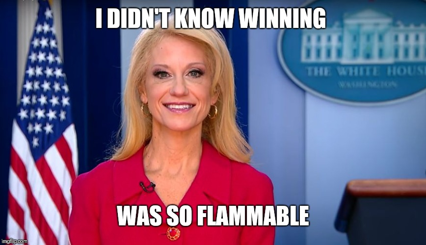I DIDN'T KNOW WINNING WAS SO FLAMMABLE | image tagged in kelly ann conway | made w/ Imgflip meme maker