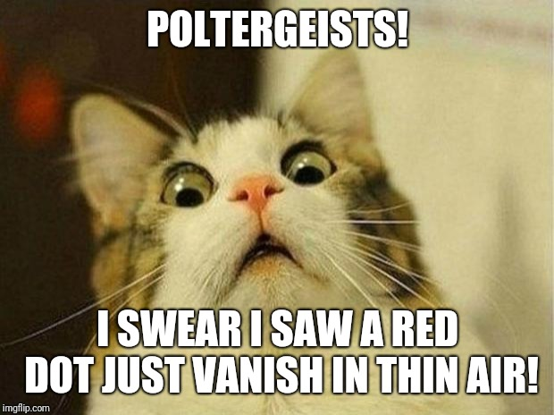 Call the x files!! | POLTERGEISTS! I SWEAR I SAW A RED DOT JUST VANISH IN THIN AIR! | image tagged in memes,scared cat | made w/ Imgflip meme maker