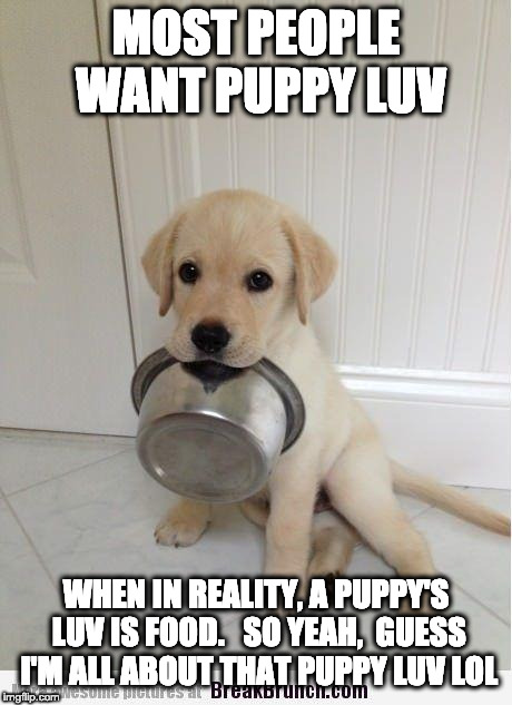 MOST PEOPLE WANT PUPPY LUV WHEN IN REALITY, A PUPPY'S LUV IS FOOD.   SO YEAH,  GUESS I'M ALL ABOUT THAT PUPPY LUV LOL | image tagged in food | made w/ Imgflip meme maker
