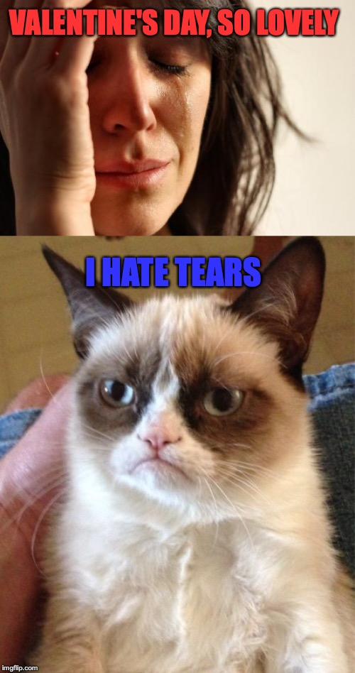 VALENTINE'S DAY, SO LOVELY I HATE TEARS | image tagged in memes,first world problems,grumpy cat | made w/ Imgflip meme maker