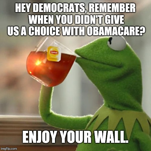 But Thats None Of My Business | HEY DEMOCRATS, REMEMBER WHEN YOU DIDN'T GIVE US A CHOICE WITH OBAMACARE? ENJOY YOUR WALL. | image tagged in memes,but thats none of my business,kermit the frog | made w/ Imgflip meme maker