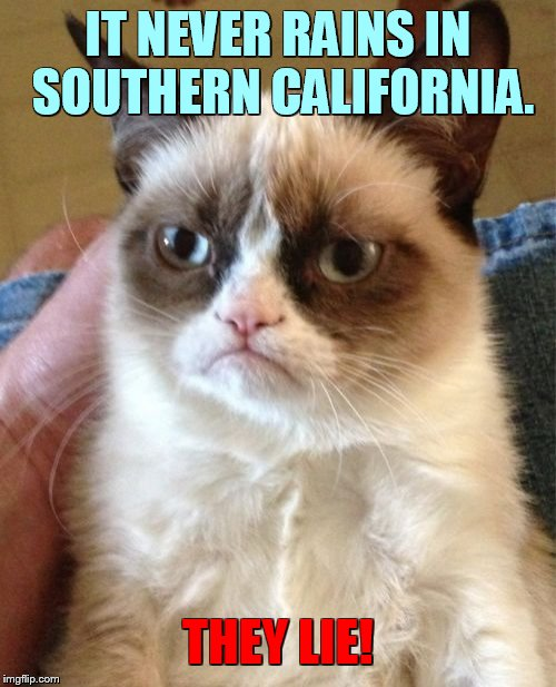 Can You Believe It? | IT NEVER RAINS IN SOUTHERN CALIFORNIA. THEY LIE! | image tagged in memes,grumpy cat,never,rain,southern california,lies | made w/ Imgflip meme maker