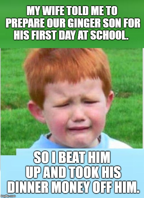 Ginger | MY WIFE TOLD ME TO PREPARE OUR GINGER SON FOR HIS FIRST DAY AT SCHOOL. SO I BEAT HIM UP AND TOOK HIS DINNER MONEY OFF HIM. | image tagged in ginger | made w/ Imgflip meme maker