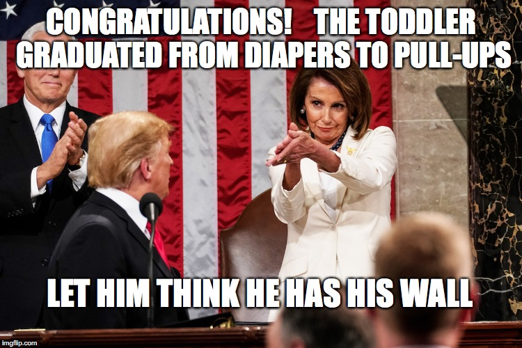 The Real National Emergency |  CONGRATULATIONS!    THE TODDLER GRADUATED FROM DIAPERS TO PULL-UPS; LET HIM THINK HE HAS HIS WALL | image tagged in donald trump,wall,nancy pelosi | made w/ Imgflip meme maker