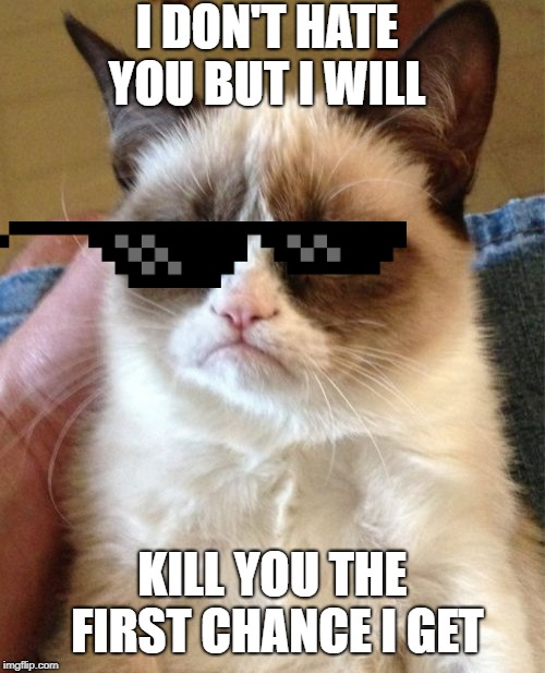 Grumpy Cat Meme | I DON'T HATE YOU BUT I WILL KILL YOU THE FIRST CHANCE I GET | image tagged in memes,grumpy cat | made w/ Imgflip meme maker
