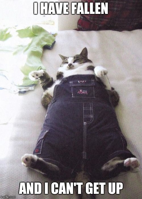 Fat Cat | I HAVE FALLEN AND I CAN'T GET UP | image tagged in memes,fat cat | made w/ Imgflip meme maker