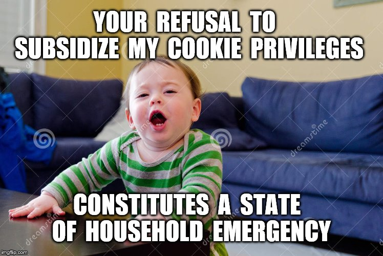 State of emergency. |  YOUR  REFUSAL  TO  SUBSIDIZE  MY  COOKIE  PRIVILEGES; CONSTITUTES  A  STATE  OF  HOUSEHOLD  EMERGENCY | image tagged in privilege,my way,tantrum,logic | made w/ Imgflip meme maker