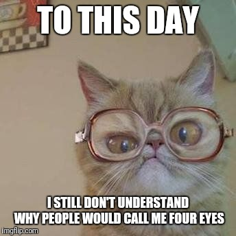 Serious Question |  TO THIS DAY; I STILL DON'T UNDERSTAND WHY PEOPLE WOULD CALL ME FOUR EYES | image tagged in funny cat with glasses | made w/ Imgflip meme maker