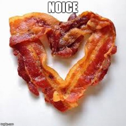 bacon | NOICE | image tagged in bacon | made w/ Imgflip meme maker