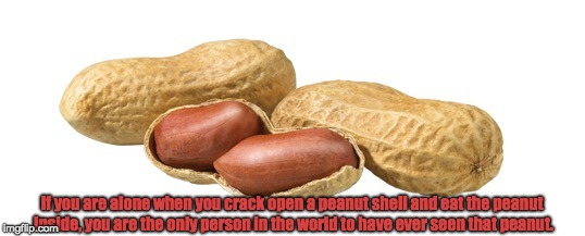 Peanuts | If you are alone when you crack open a peanut shell and eat the peanut inside, you are the only person in the world to have ever seen that p | image tagged in peanuts,farmers | made w/ Imgflip meme maker