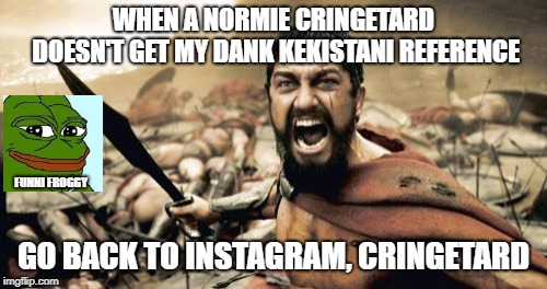 only my fellow redditors will get this | WHEN A NORMIE CRINGETARD DOESN'T GET MY DANK KEKISTANI REFERENCE GO BACK TO INSTAGRAM, CRINGETARD FUNNI FROGGY | image tagged in cringe | made w/ Imgflip meme maker
