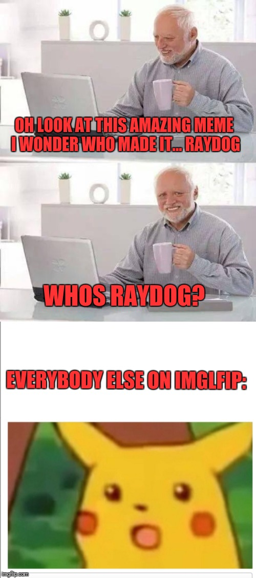 OH LOOK AT THIS AMAZING MEME I WONDER WHO MADE IT... RAYDOG WHOS RAYDOG? EVERYBODY ELSE ON IMGLFIP: | image tagged in memes,hide the pain harold | made w/ Imgflip meme maker