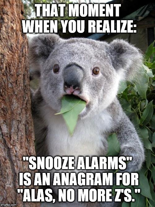 "Surprised Koala |  THAT MOMENT WHEN YOU REALIZE:; ""SNOOZE ALARMS"" IS AN ANAGRAM FOR ""ALAS, NO MORE Z'S."" 