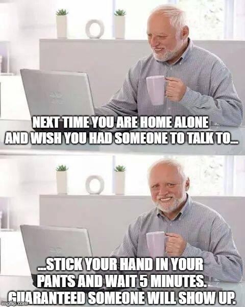Lonely Guy | NEXT TIME YOU ARE HOME ALONE AND WISH YOU HAD SOMEONE TO TALK TO... ...STICK YOUR HAND IN YOUR PANTS AND WAIT 5 MINUTES. GUARANTEED SOMEONE  | image tagged in memes,hide the pain harold | made w/ Imgflip meme maker