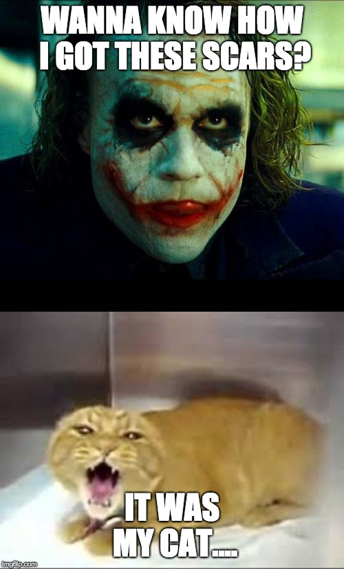 WANNA KNOW HOW I GOT THESE SCARS? IT WAS MY CAT.... | image tagged in joker it's simple we kill the batman | made w/ Imgflip meme maker