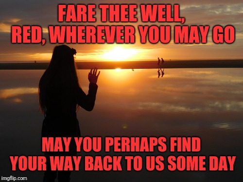 I just discovered that RedRedWine deleted her account. This is for her | FARE THEE WELL, RED, WHEREVER YOU MAY GO MAY YOU PERHAPS FIND YOUR WAY BACK TO US SOME DAY | image tagged in redredwine,goodbye,farewell,deleted accounts | made w/ Imgflip meme maker