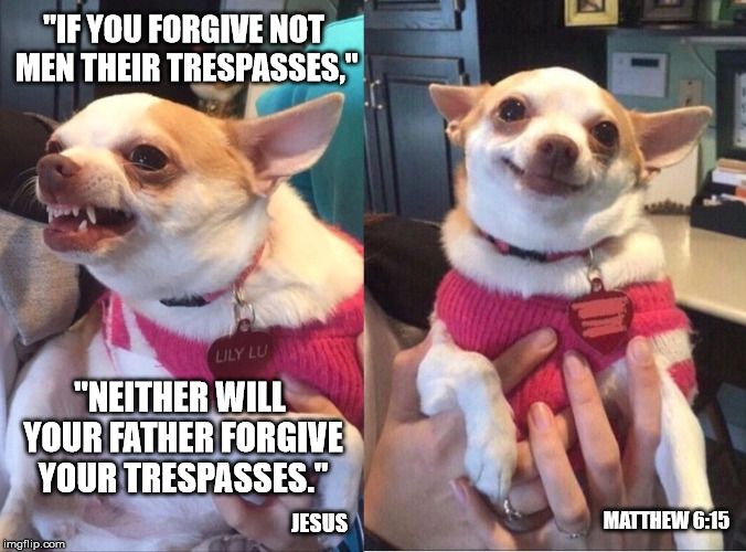 "Repentant Chihuahua | ""IF YOU FORGIVE NOT MEN THEIR TRESPASSES,"" ""NEITHER WILL YOUR FATHER FORGIVE YOUR TRESPASSES."" JESUS MATTHEW 6:15 