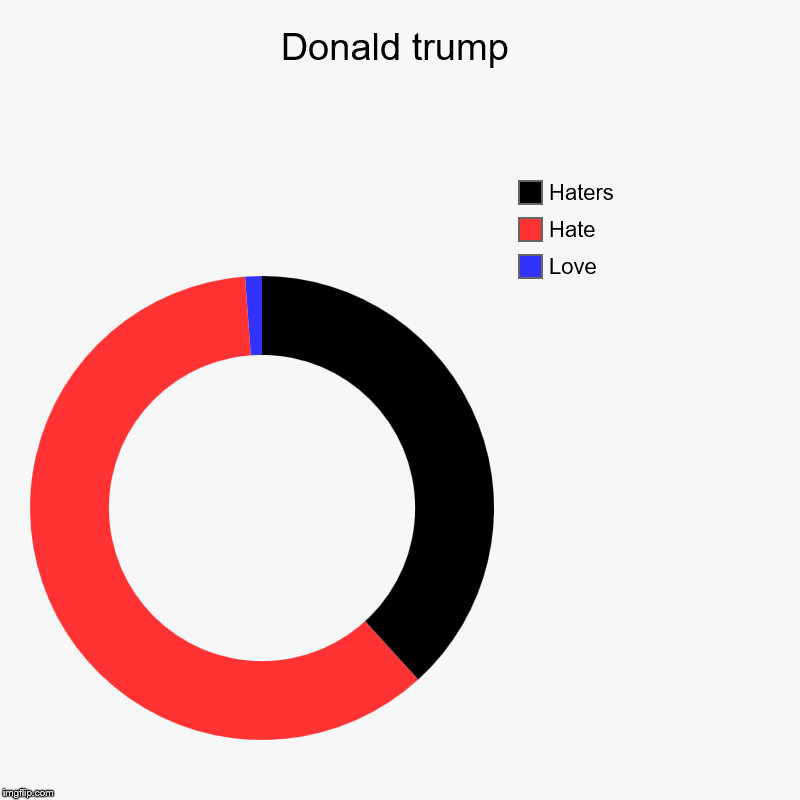 Donald trump | Love, Hate, Haters | image tagged in charts,donut charts | made w/ Imgflip chart maker