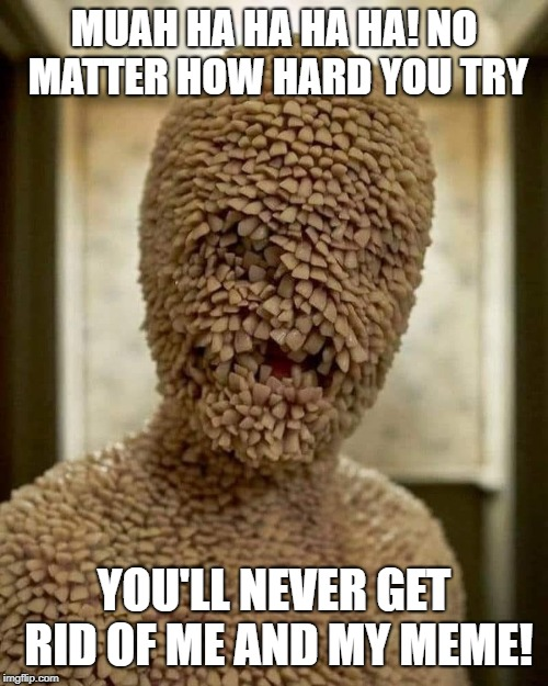 Tooth Fairy | MUAH HA HA HA HA! NO MATTER HOW HARD YOU TRY YOU'LL NEVER GET RID OF ME AND MY MEME! | image tagged in tooth fairy | made w/ Imgflip meme maker