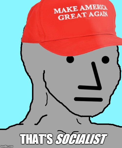 MAGA NPC | THAT'S SOCIALIST | image tagged in maga npc | made w/ Imgflip meme maker