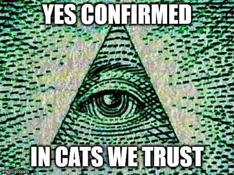 Illuminati | YES CONFIRMED IN CATS WE TRUST | image tagged in illuminati | made w/ Imgflip meme maker