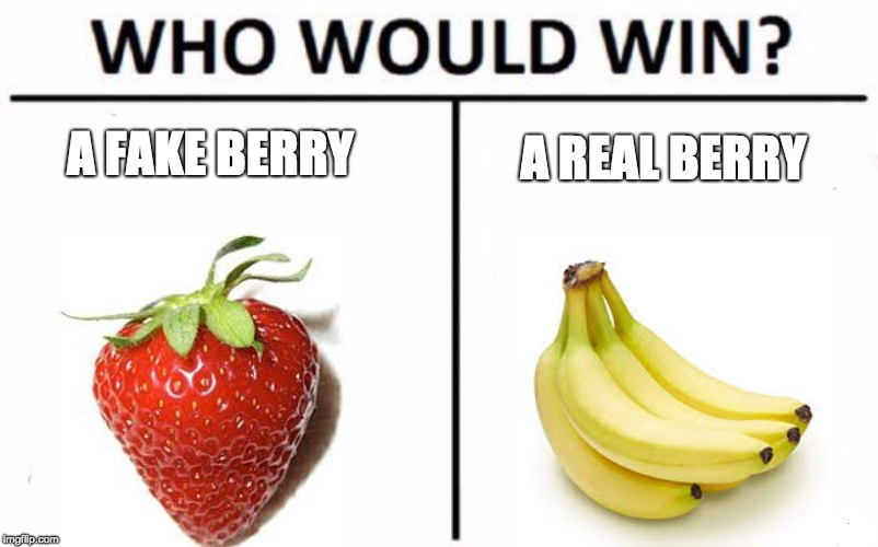 Who Would Win? | A FAKE BERRY A REAL BERRY | image tagged in memes,who would win,strawberry,banana,fake | made w/ Imgflip meme maker