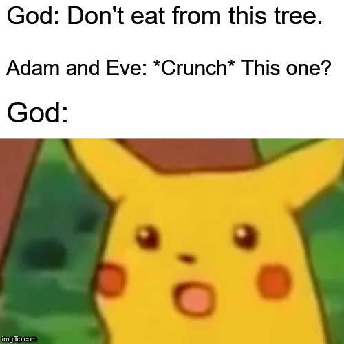 Surprised Pikachu Meme | God: Don't eat from this tree. Adam and Eve: *Crunch* This one? God: | image tagged in memes,surprised pikachu | made w/ Imgflip meme maker