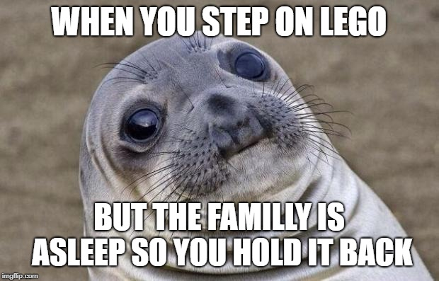 Awkward Moment Sealion Meme | WHEN YOU STEP ON LEGO BUT THE FAMILLY IS ASLEEP SO YOU HOLD IT BACK | image tagged in memes,awkward moment sealion | made w/ Imgflip meme maker