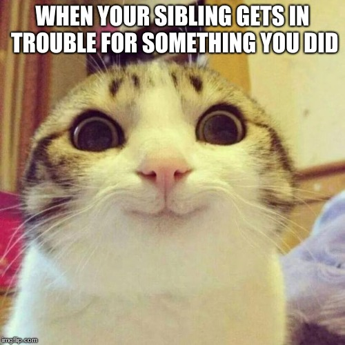 Smiling Cat | WHEN YOUR SIBLING GETS IN TROUBLE FOR SOMETHING YOU DID | image tagged in memes,smiling cat | made w/ Imgflip meme maker