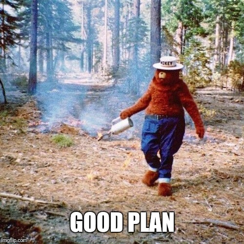 Smokey arsonist | GOOD PLAN | image tagged in smokey arsonist | made w/ Imgflip meme maker
