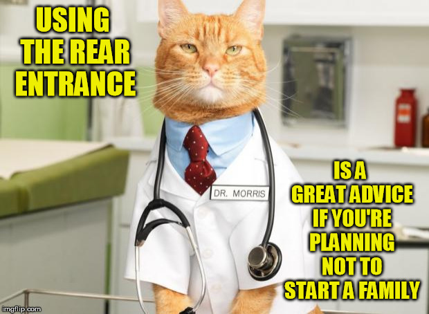 Cat Doctor | USING THE REAR ENTRANCE IS A GREAT ADVICE IF YOU'RE PLANNING NOT TO START A FAMILY | image tagged in cat doctor | made w/ Imgflip meme maker