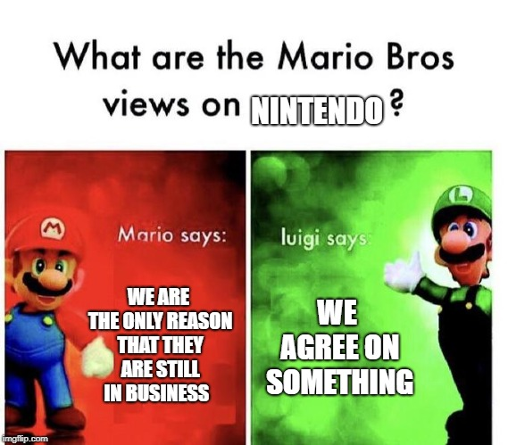 Mario Bros Views | WE ARE THE ONLY REASON THAT THEY ARE STILL IN BUSINESS WE AGREE ON SOMETHING NINTENDO | image tagged in mario bros views | made w/ Imgflip meme maker