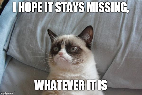Grumpy Cat Bed Meme | I HOPE IT STAYS MISSING, WHATEVER IT IS | image tagged in memes,grumpy cat bed,grumpy cat | made w/ Imgflip meme maker