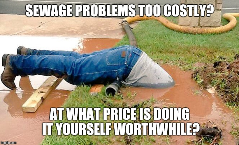 Plumber |  SEWAGE PROBLEMS TOO COSTLY? AT WHAT PRICE IS DOING IT YOURSELF WORTHWHILE? | image tagged in plumber | made w/ Imgflip meme maker